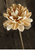 17 Best Images About Sola Wood Flowers On Pinterest