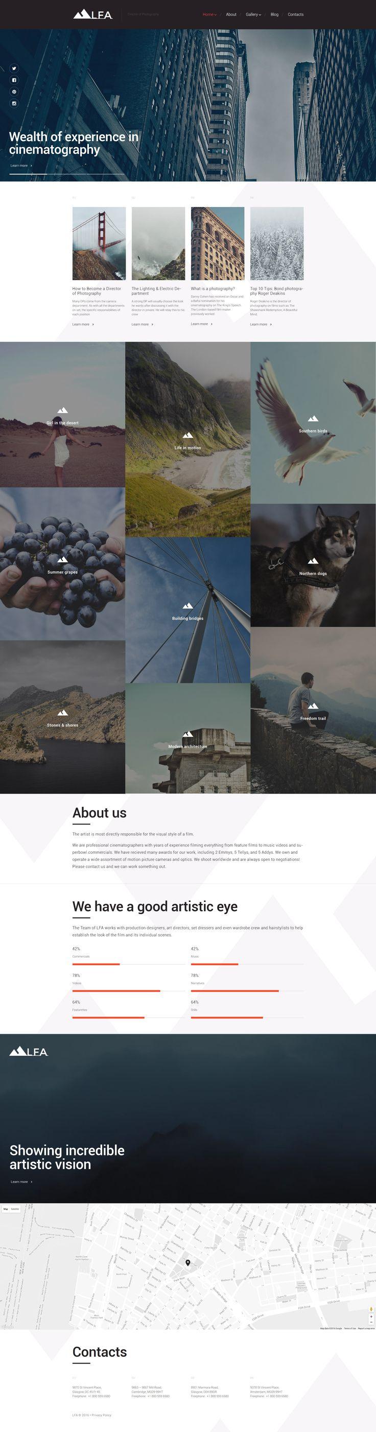 LFA WordPress Theme Website ThemesWebsite 306