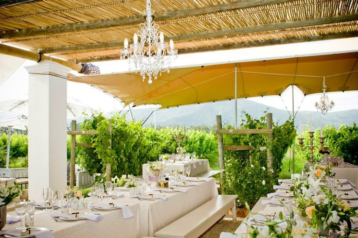 Wedding in the vineyards.  www.eventsandtents.co.za