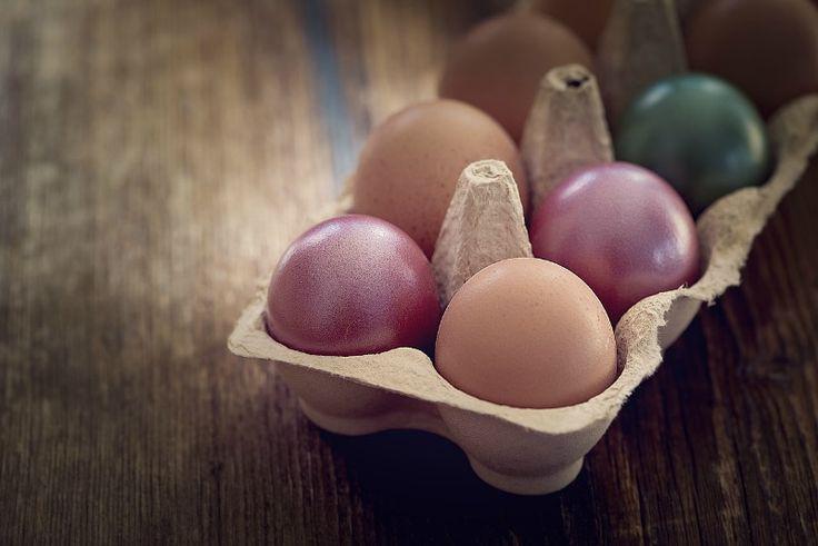 15 feiten over eieren
