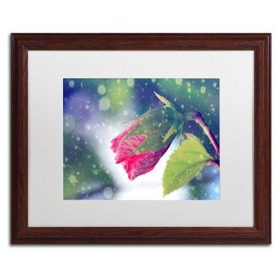 Trademark Fine Art Out of the Blue Framed Art by Beata Czyzowska Young Brown Frame/White Matte - BC0139-W1620MF