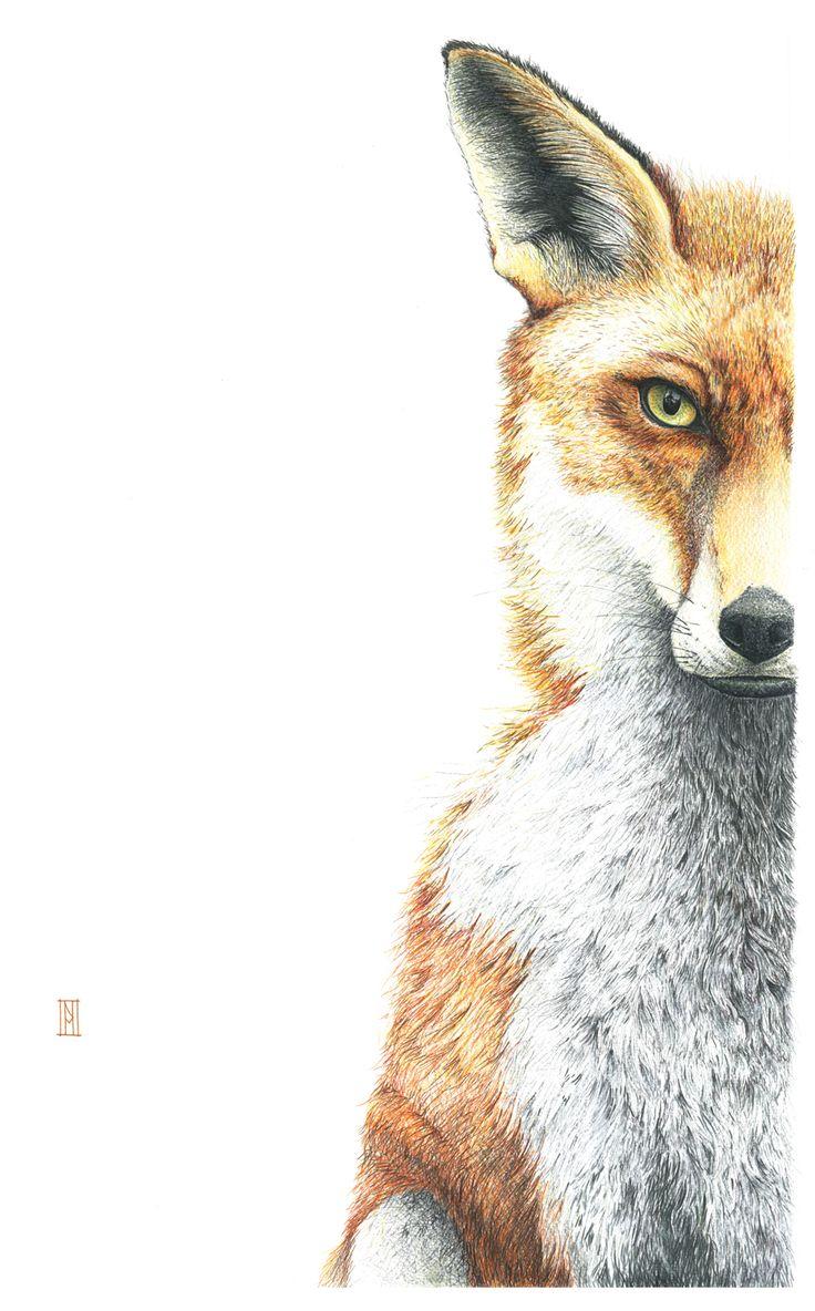 'Interlude with a Fox' - Nikki McIvor 2014