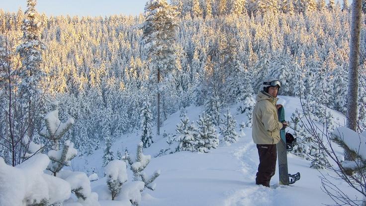 Laukaa backcountry, Finland 06.01.2010   Powderlove