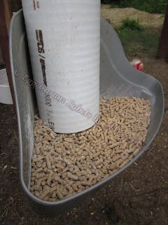 @ Bruce:  I want this!!!   Wasted feed drives me NUTS.  After much research, contemplating dozens of designs and several iterations of my own, I am now happy with my feeder. There are no longer piles of wasted grain on the floor. Wa-hooo! Mission accomplished. I made my feeder, and you can make one too, for around $12.00 and in about 20 minutes.