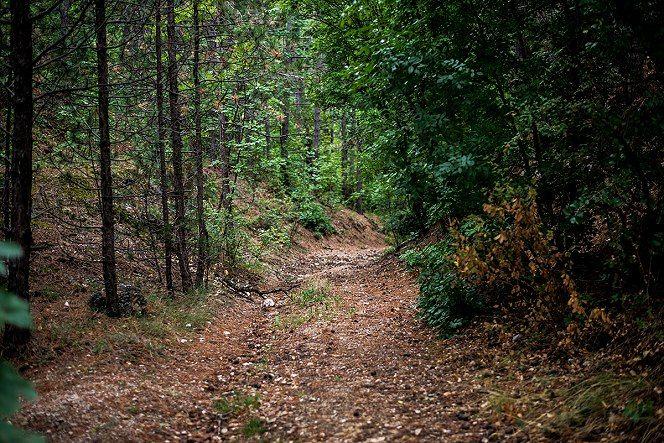 Burok-völgy, Bakonykúti és Királyszállás között