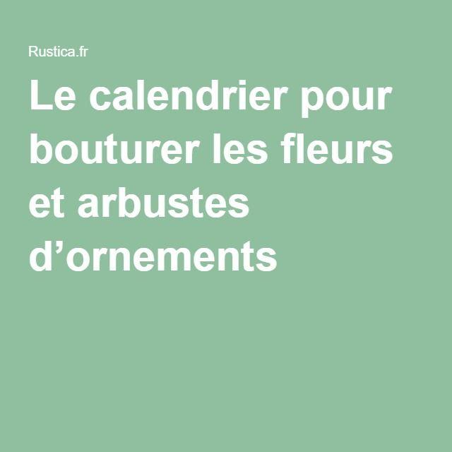 Le calendrier pour bouturer les fleurs et arbustes d'ornements