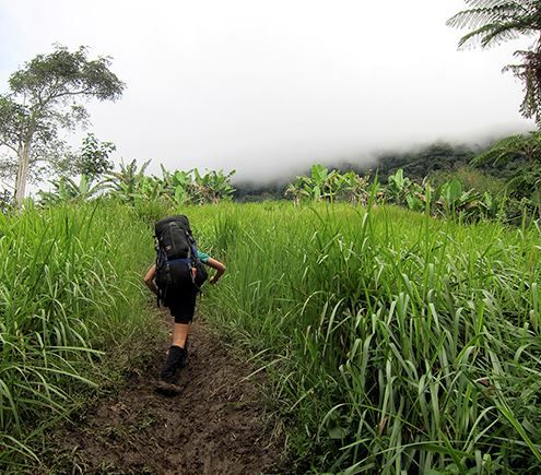 National Geographic's World's Best Hikes: Thrilling Trails | Best for: Jungle explorers and World War II history buffs | www.dokokoda.com