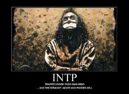 17 Best images about INTP on Pinterest   To be ...