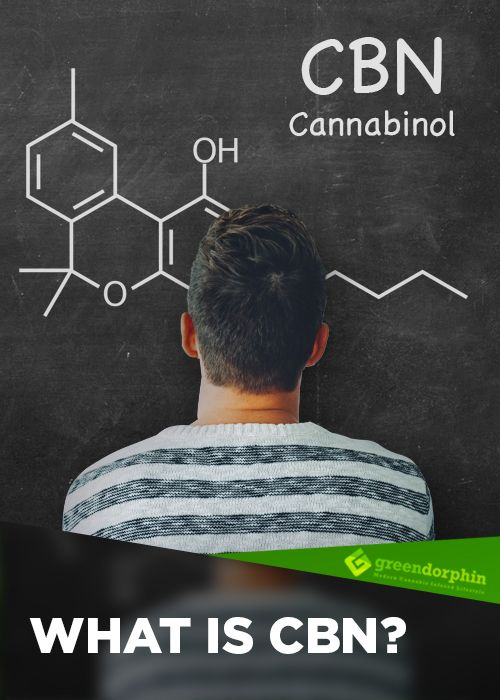 CBN is the product of THC degradation. As THC oxidizes, it converts to CBN. This process can be started either by heat or oxidation. That means that aged or poorly stored cannabis is likely to have higher levels of CBN than fresh flower. Improperly cured cannabis also contains higher amounts of this cannabinoid.