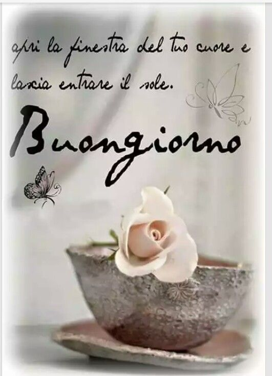 842 best images about buon giorno on pinterest good day for Top immagini buongiorno