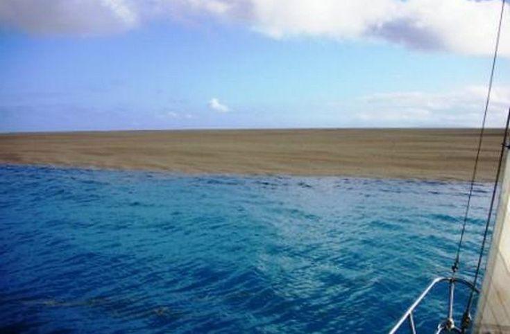Ταξίδευαν στον ωκεανό όταν είδαν κάτι που τους κίνησε την περιέργεια. Είναι τυχεροί που ζουν για να το διηγηθούν..