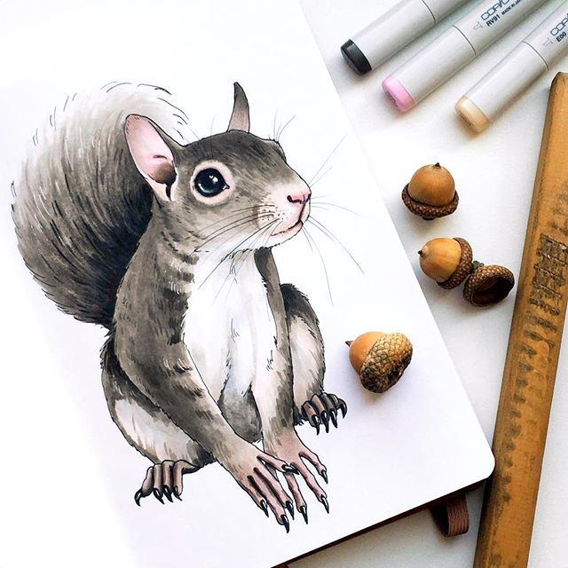 🐿 #скетч #скетчбук #sketch #sketching #sketchbook #leuchtturm1917 #copic #markers #copicmarkers #instaart #art #arts_help #drawing #process_of_creativity #worldofartists #artoftheday #illustration #topcreator #v0lha_sketch