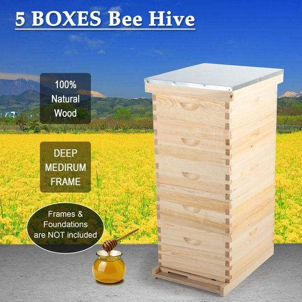 Langstroth Hive Frame Bee Hive Frame Beehive Frames For Beekeeping Wish In 2020 Framed Bee Langstroth Hive Bee Hive