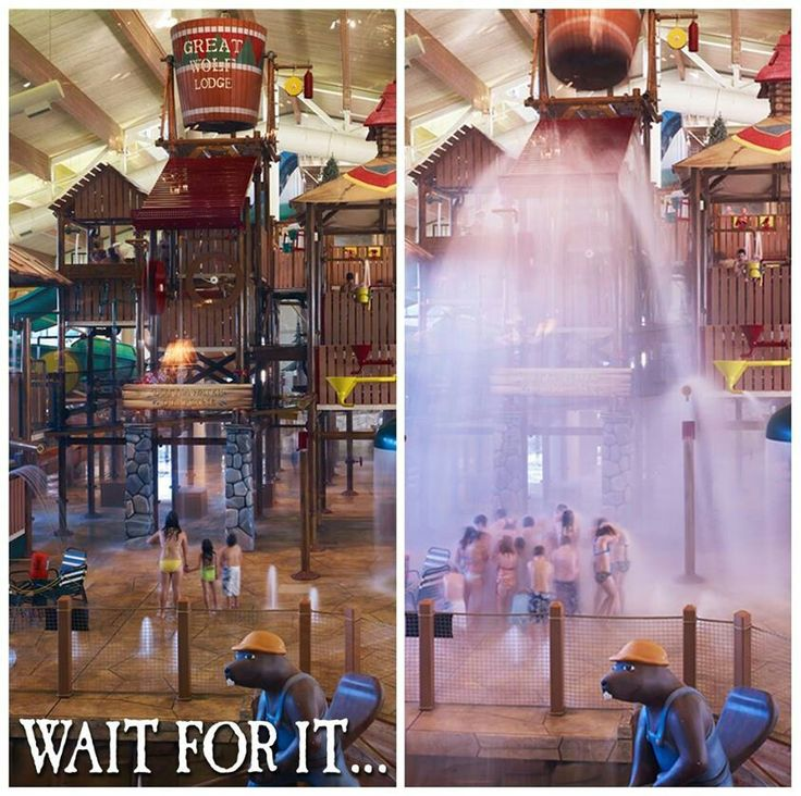 Wisconsin Dells Attractions is a great place for one and all to enjoy your favorite outdoor activity. Come to relax and take in the natural beauty and fantastic scenery of the Northwood's.