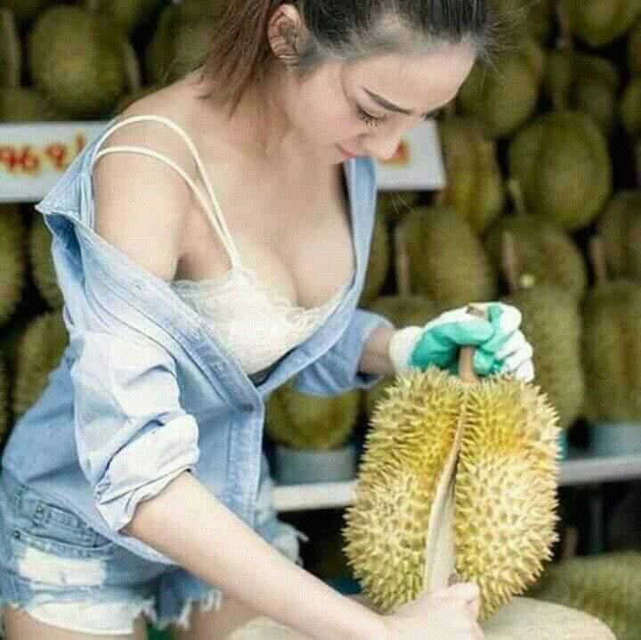 Download 93 Koleksi Gambar Durian Lucu Gokil Terbaru Gratis HD