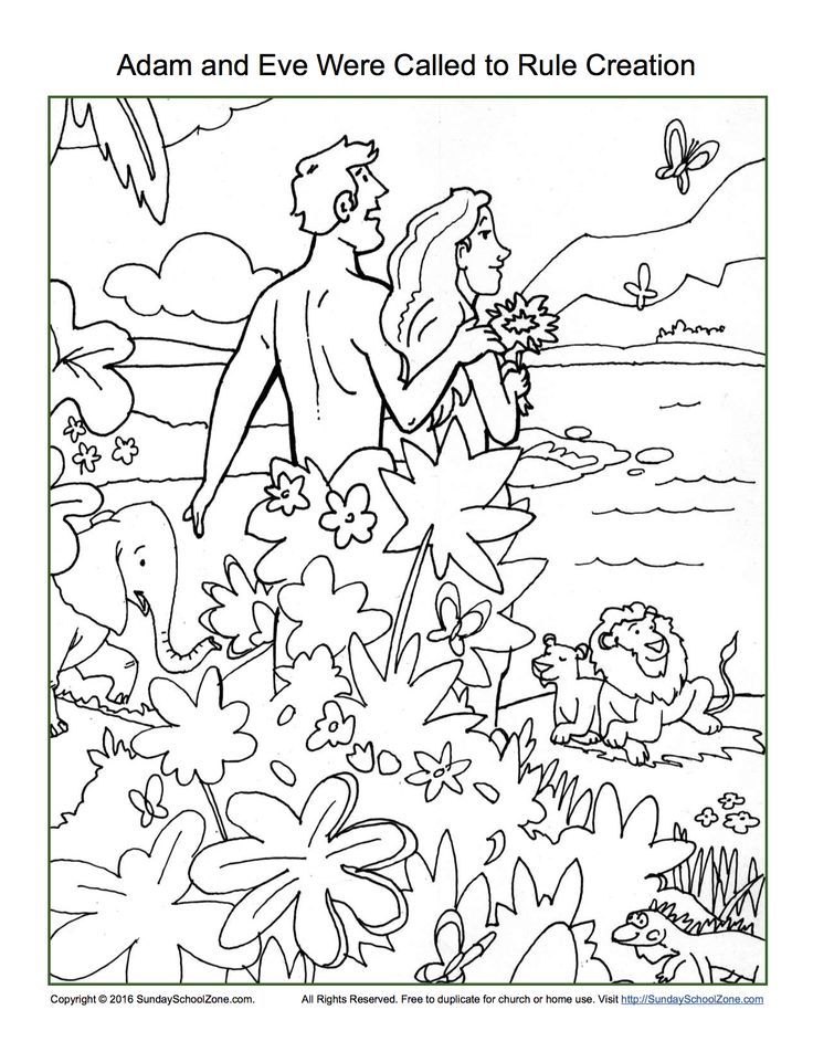 Adam And Eve Were Called To Rule Creation Coloring Page Sunday School ActivitiesBible