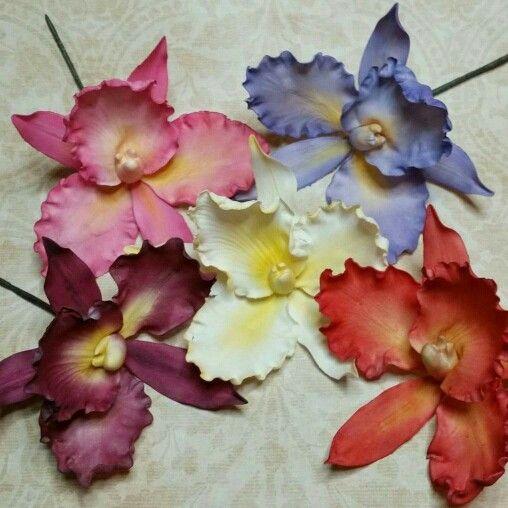 Catelaya Orchids #cakesbyraewyn #flowers #orchids #wedding #weddingflowers #sugarflowerclasses #weddingcake #raewynreadcakedesign