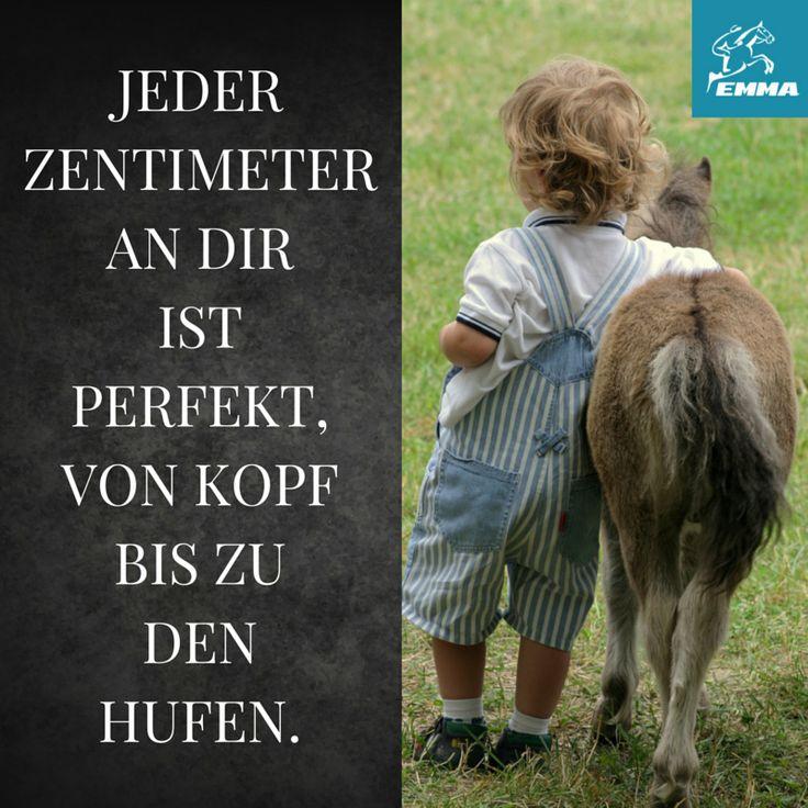 Pferdesprüche & Pferde Zubehör-emma-pferdefuttershop.de. (4)