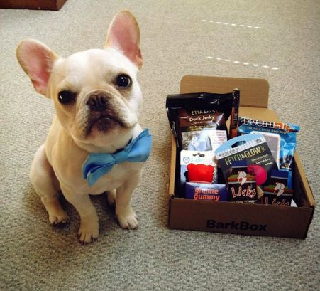 BarkBox Monthly Subscription