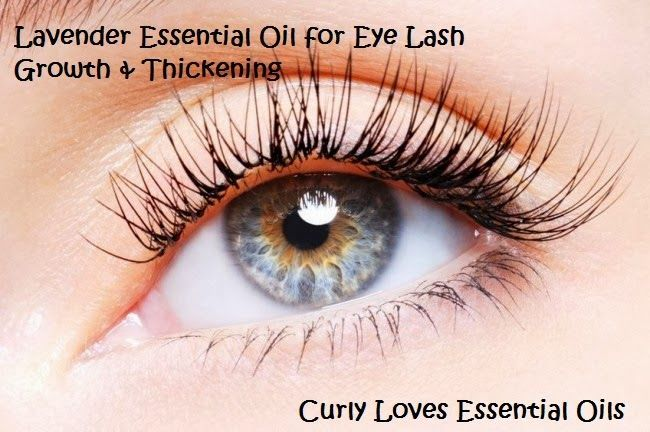 facc1a34710 Curly Loves Essential Oils: Lavender Essential Oil for Eye Lash Growth &  Thickening. Order Lavender Essential Oil from Spark Naturals.