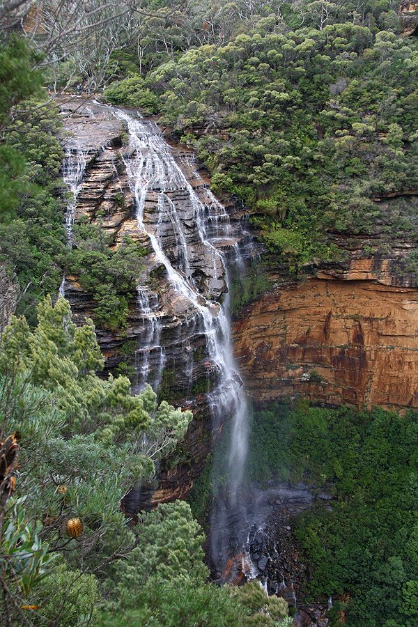 Wentworth Falls - The National Pass, Blue Mountains NSW #Travel NSW Australia multicityworldtravel.com We cover the world over 220 countries, 26 languages and 120 currencies Hotel and Flight deals.guarantee the best price