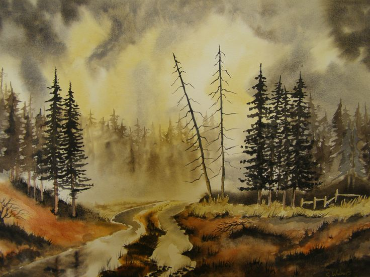 Scottish Firs water colour by Colin Walters 594mm x 420mm