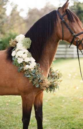 horse wreath wedding  | desi baytan photography