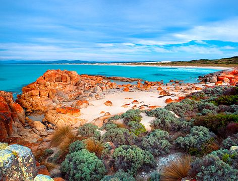 Beer Barrel Beach, St Helens, Bay of Fires, Tasmania tas16