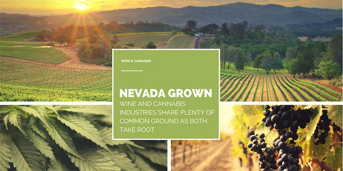 Nevada Grown: Wine and Cannabis Industries Both Take Root
