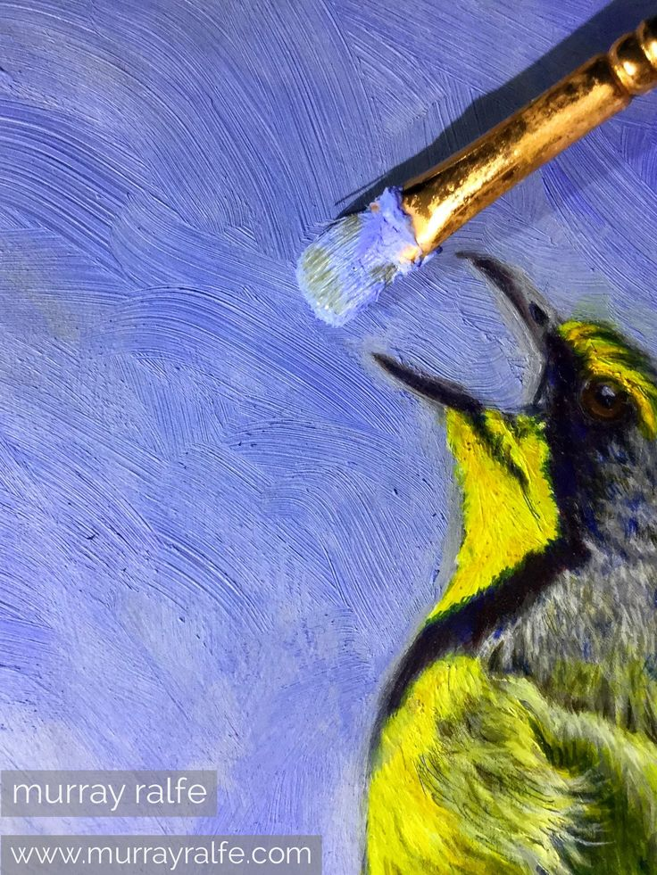 Painting with my hot wax medium which creates a lovely matt texture. I have mixed it with Michael harding's kings blue light oil colour. I wanted to achieve a distinction between the bird which is glossy with a venetian Turpentine medium and the matt behind to add an extra dimension