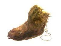 Los Matagi, eran unos tipos de botas utilizados en los bosques por los cazadores.