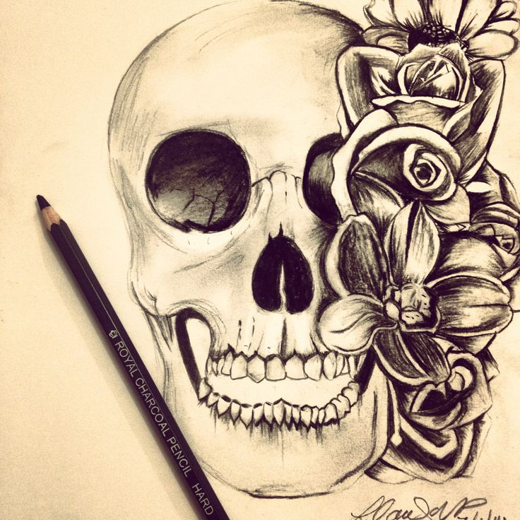Skull, black and white charcoal sketch