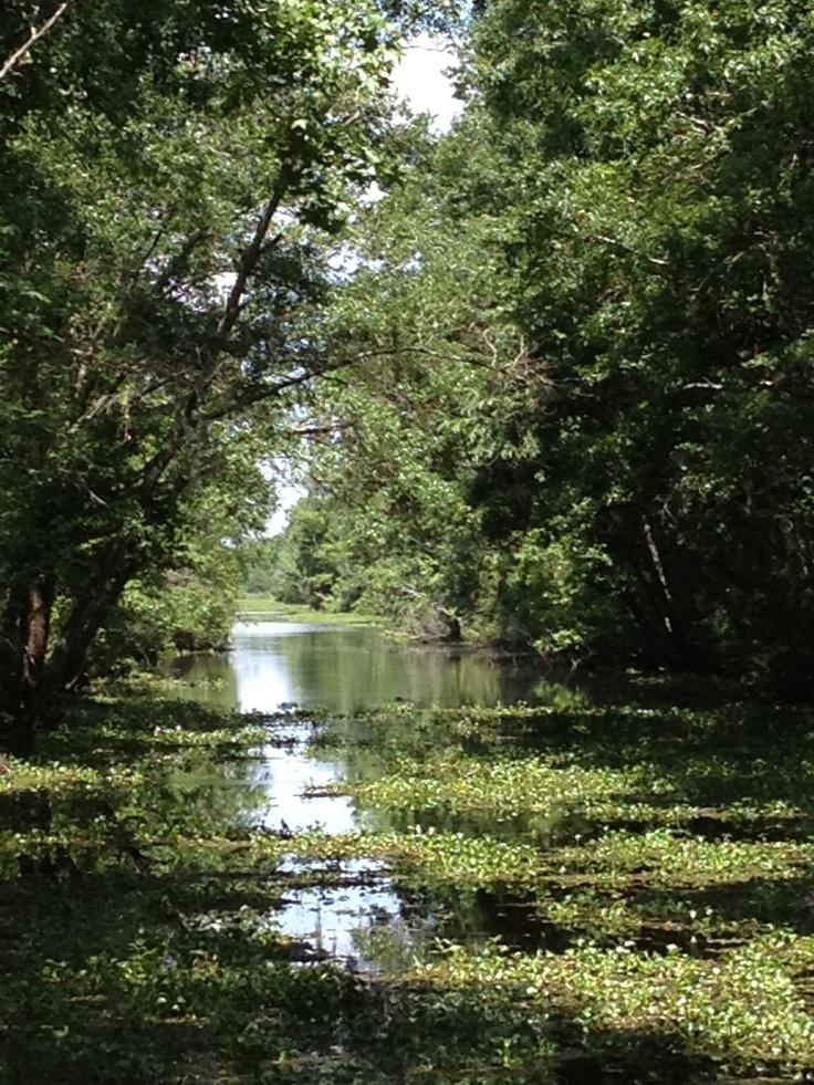bayou goula girls Bayou goula 8 likes 88 were here bayou goula es un lugar designado por el censo ubicado en la parroquia de iberville en el estado estadounidense de.