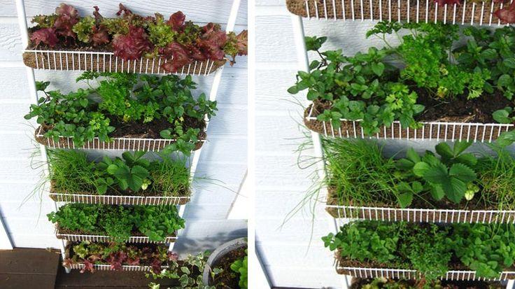 échelle de paniers jardiniere verticale