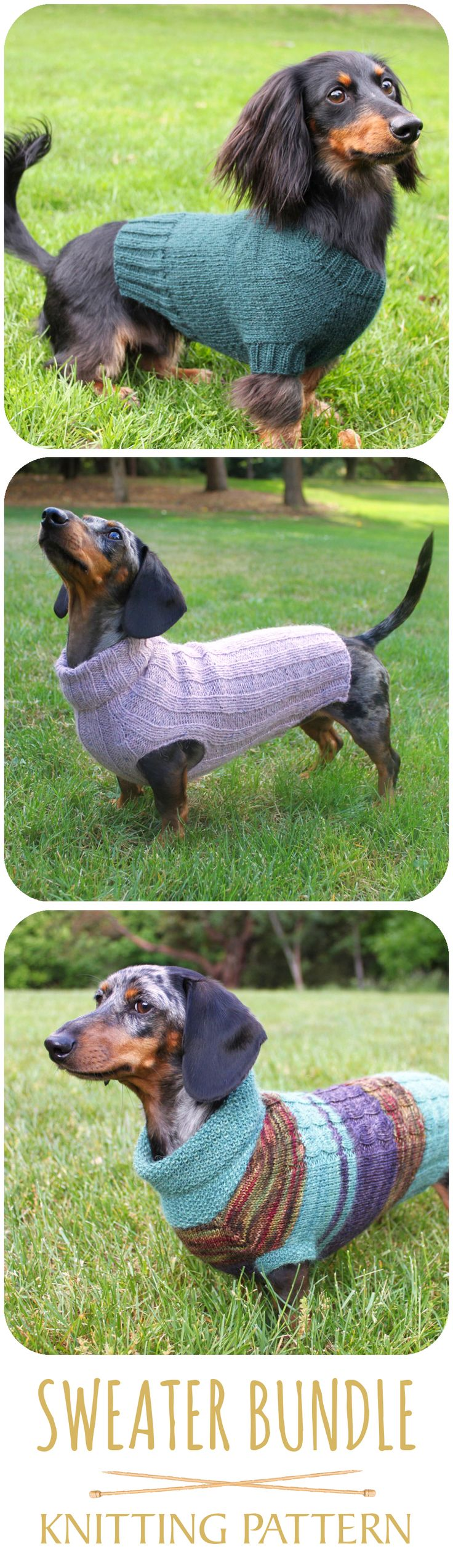 This is a knitting pattern bundle of adorable mini dachshund sweaters. #dachshund #dog #doglovers #minidachshund #dogsweater #knittingpattern #luckyfoxknits #etsy #smalldogsweater #knitting