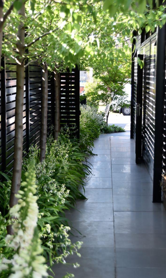 Designed By Mg Gardens Rosanna St Www Mggardens Com Au Photo By