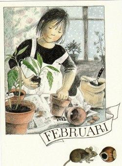 Februari (K50-586) ansichtkaart