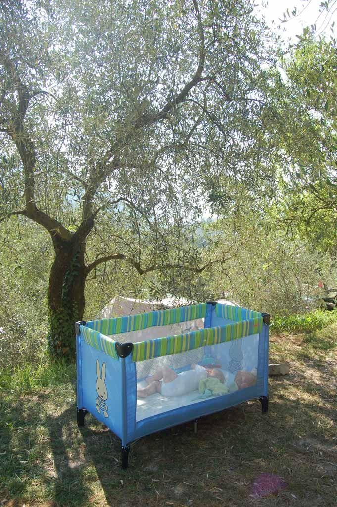 Camping Sainte Madeleine in Sospel: ruime plekken op een groene camping, in de bergen, in de buurt van het strand, eenvoudig zwembad. Perfect plekje!