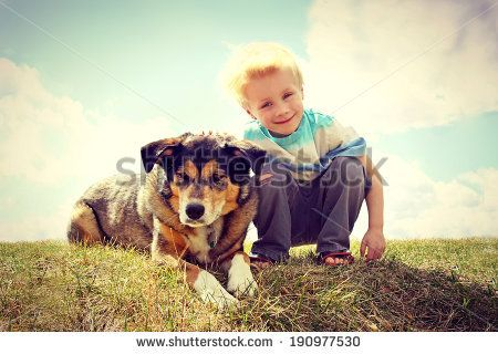 a young boy child is sitting outside in the grass, smiling as he pets his German Shepherd Dog.  VIntage Style Color. - stock photo