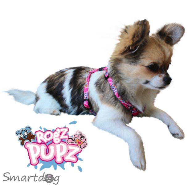 Rogz Pupz hvalpesele - Roxi