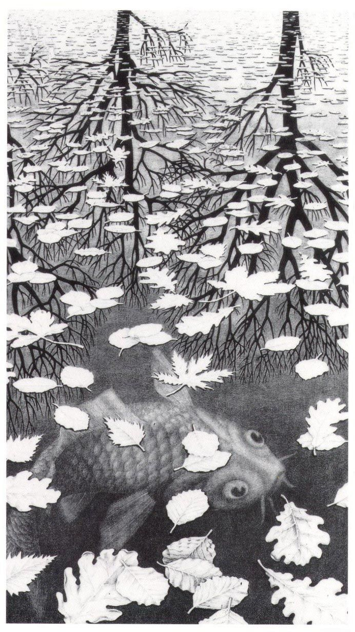 Three Worlds by M.C. Escher - (Jun 17, 1898 -Mar 27, 1972): Dutch graphic artist, known for his mathematically inspired woodcuts, lithographs, & mezzotints. Wikipedia http://freakytrigger.co.uk/wordpress/wp-content/uploads/2007/11/three_worlds.jpg