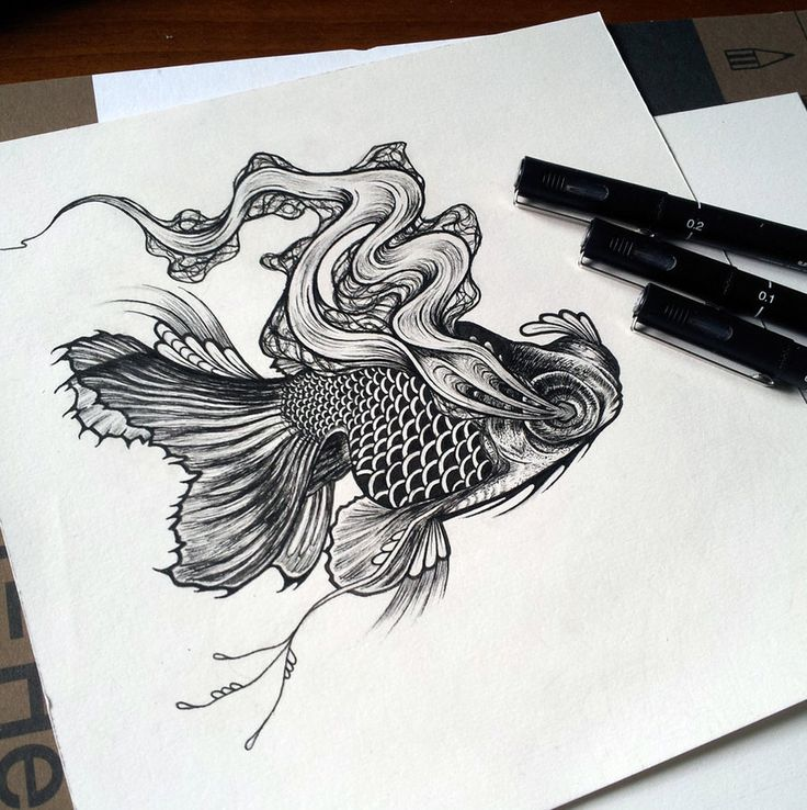 Black Moor Goldfish wip by Gfield on DeviantArt