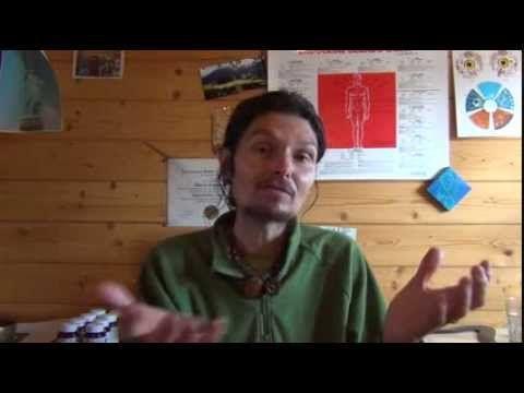 Protéines 17 : Noix & Graines de Chia , Lin , Chanvre , Tournesol - YouTube