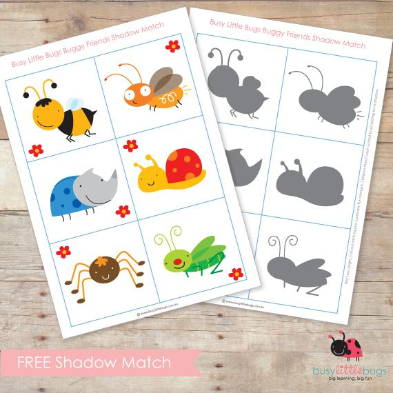 BUGGY FRIENDS SHADOW MATCH to use with #preschool age children. Use while older siblings study Apologia Flying Creatures #homeschool. Insect activity for #preschool