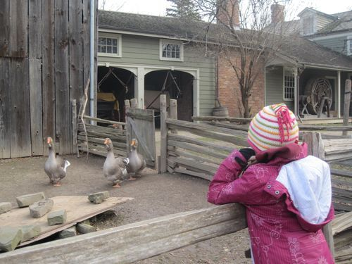 Black Creek Pioneer Village - a fun and educational living history museum in Toronto.