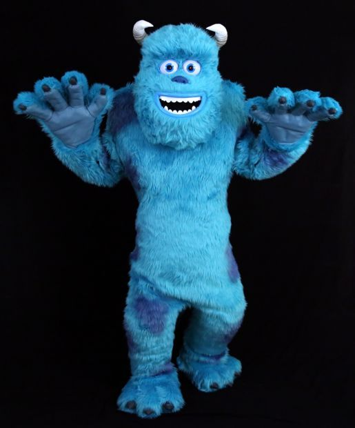 Amazing Best 25 Monster Inc Costumes Ideas On Pinterest Boo