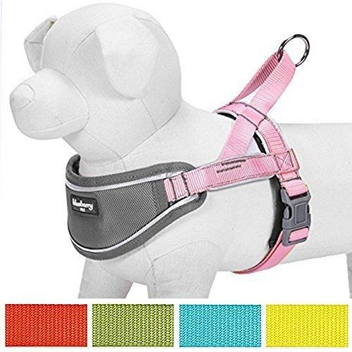 """Blueberry Pet 5 Colors Soft & Comfy 3M Reflective Strips Padded Dog Harness Vest Chest Girth 20.5"""" - 25.5"""" Pink Medium Nylon No Pull Adjustable Training Harnesses for Dogs"""