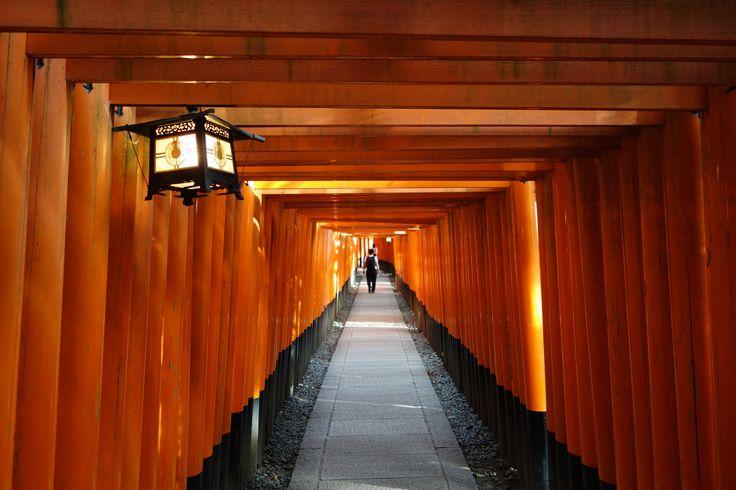 Inari. Japan. 2015
