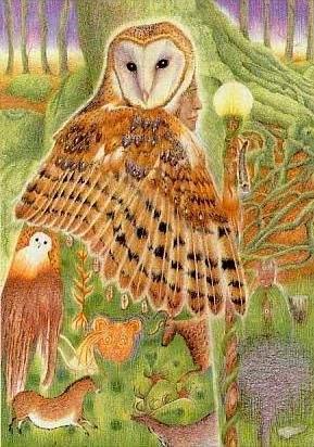 Greenwood Tarot High Priestess.  Beautiful, wise owl who can go beyond the veil into the mysterious Otherworld.  Very much like the traditional High Priestess, who sits at the pillars, with the mystery behind her veiled.