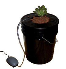 "ViagrowTM Black Bucket Deep Water Culture System by ViagrowTM. $32.99. Small Air Stone. Kit Contains:  5 Gallon Black Bucket  \ Hydroton 5L. Air Pump 1 Outlets 2W 3.2L/min \ 6"" Bucket Basket Lid. The Black Bucket Deep Water System uses a net pot lid, a 5 gallon bucket that serves as a reservoir, air pump, air stone, and tubing for an inexpensive and bubbly Deep Water Culture Kit! The net pot simply snaps onto the bucket and the air pump pumps the reservoir full of the high..."